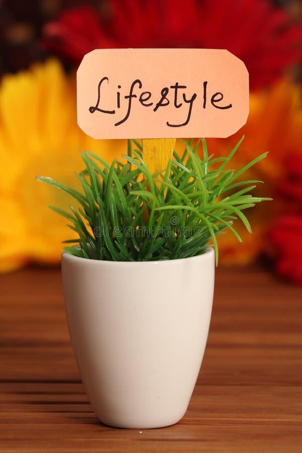 lifestyle стоковая фотография