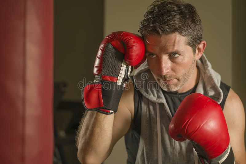 Gym workout portrait of attractive and fierce looking boxer man 30s to 40s in boxing gloves training at fitness club punching stock images