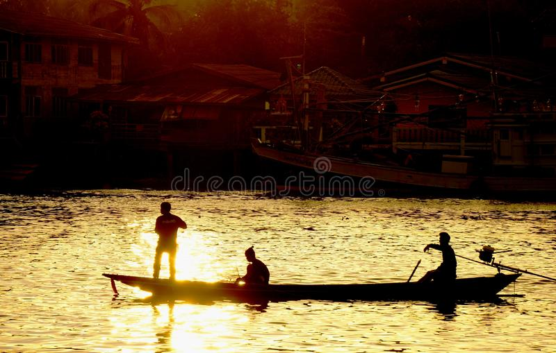 Lifestyles of the Tapi river. royalty free stock image