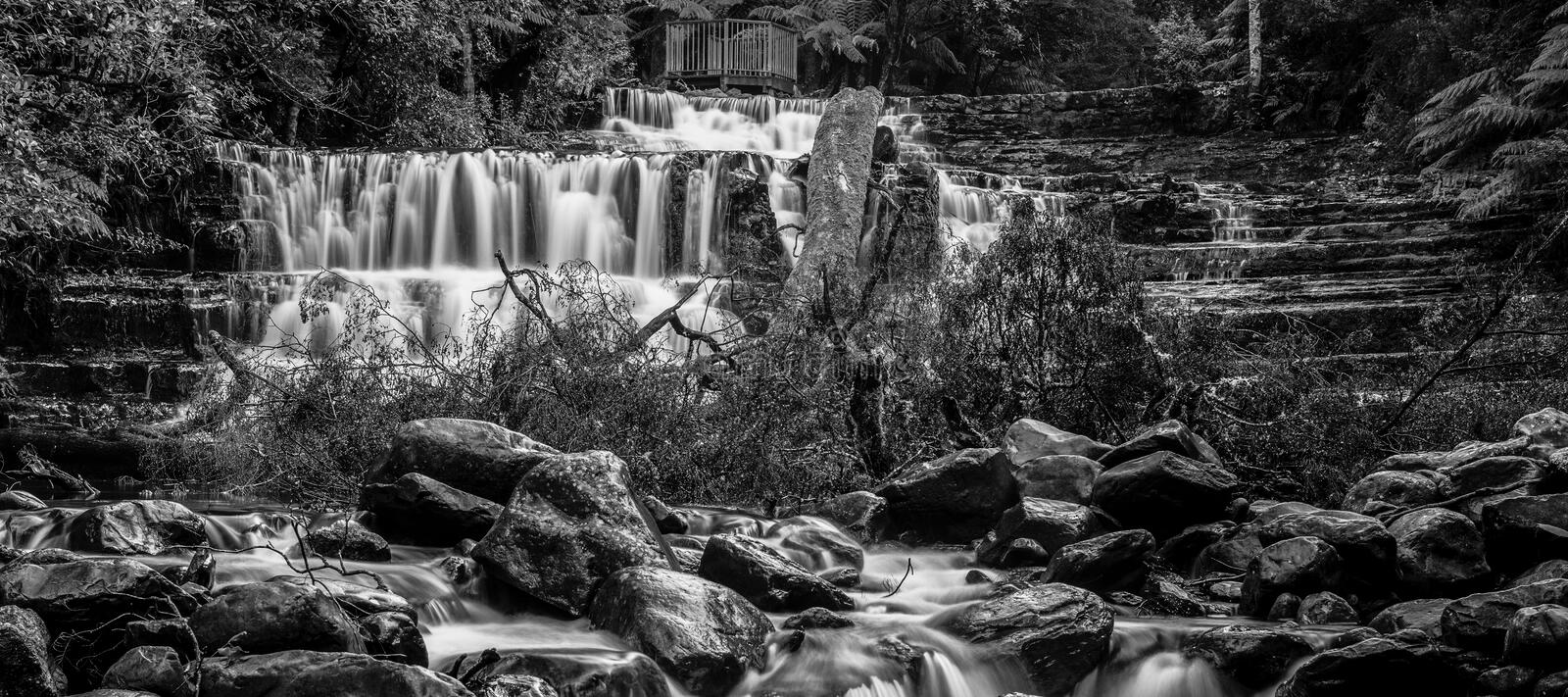 Liffey Falls in the Midlands Region, Tasmania. Beautiful Liffey Falls in the Midlands Region, Tasmania after heavy rain fall stock images