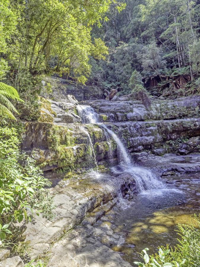 Liffey Falls in Tasmania. Victoria Falls, aka the Liffey Falls, is the major waterfall of a series of four waterfalls on the Liffey River, in the Midlands region royalty free stock images