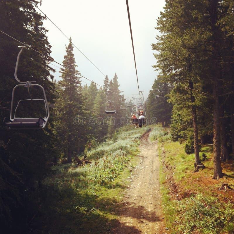 Lift in het bos
