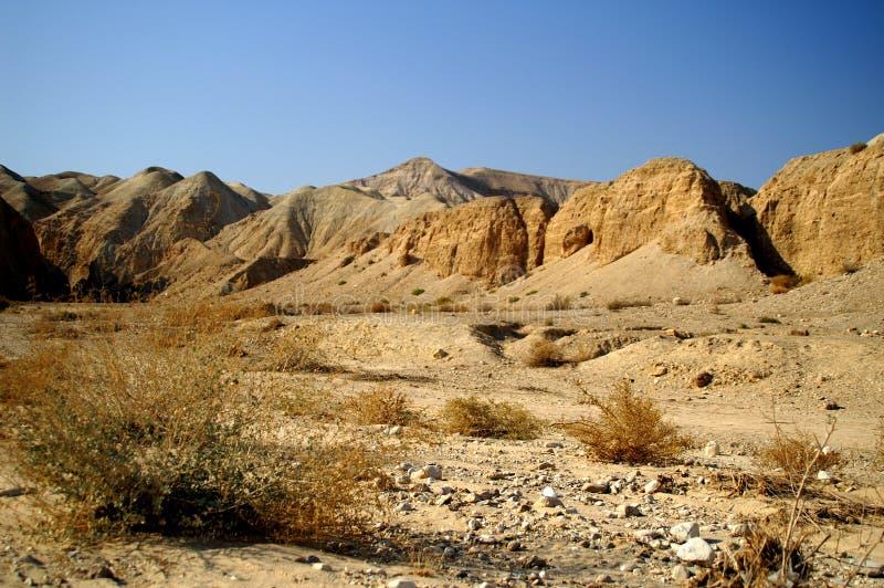 liggande för öken för aravabakgrund död royaltyfri fotografi