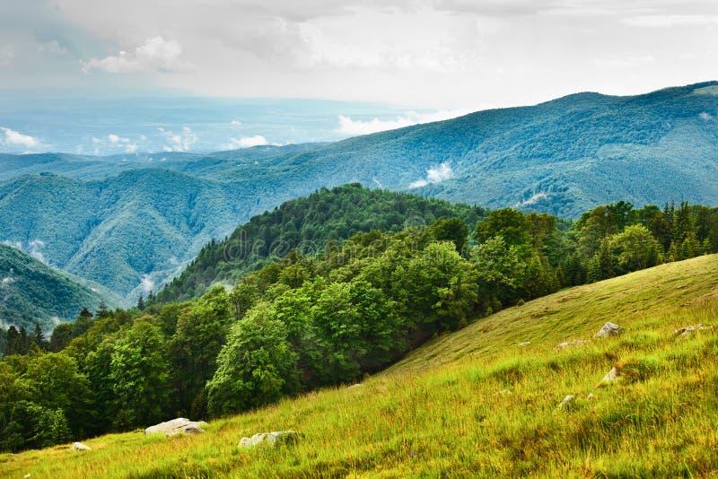 Liggande med Parang berg i Rumänien royaltyfria bilder