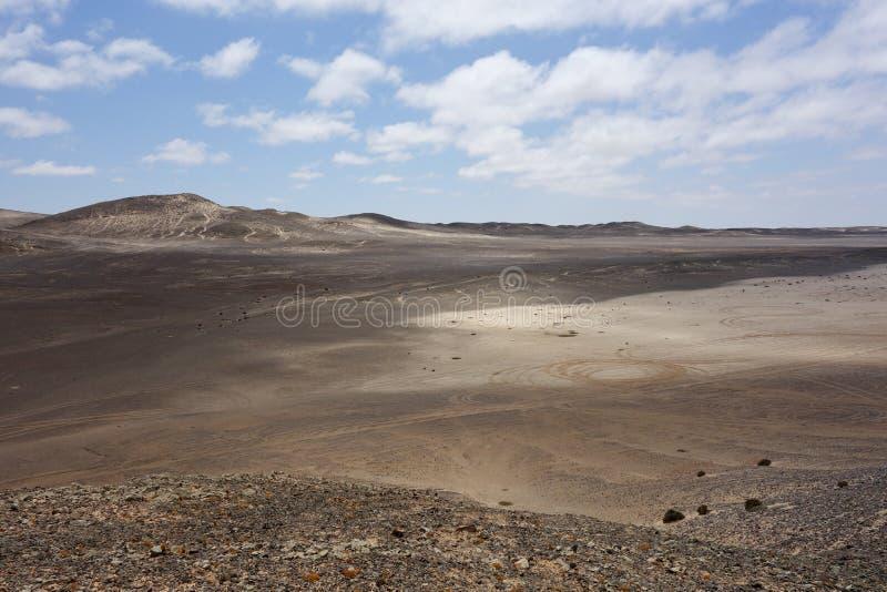 liggande namibian arkivfoto