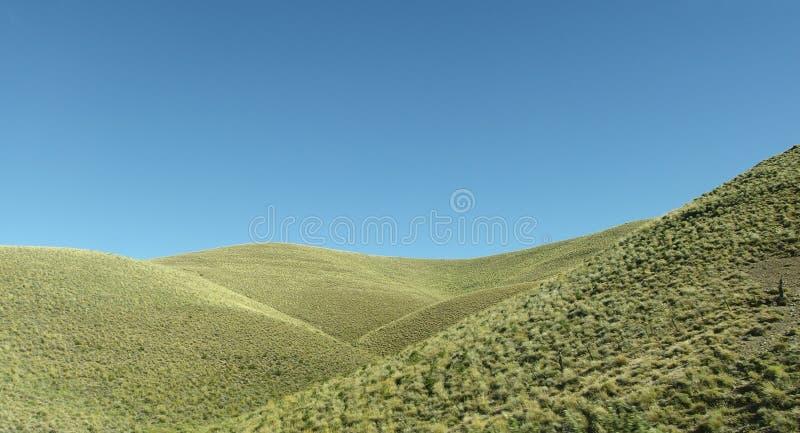 liggande patagonian royaltyfri fotografi