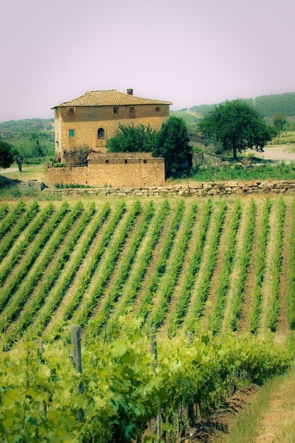 liggande typiska tuscan arkivfoto
