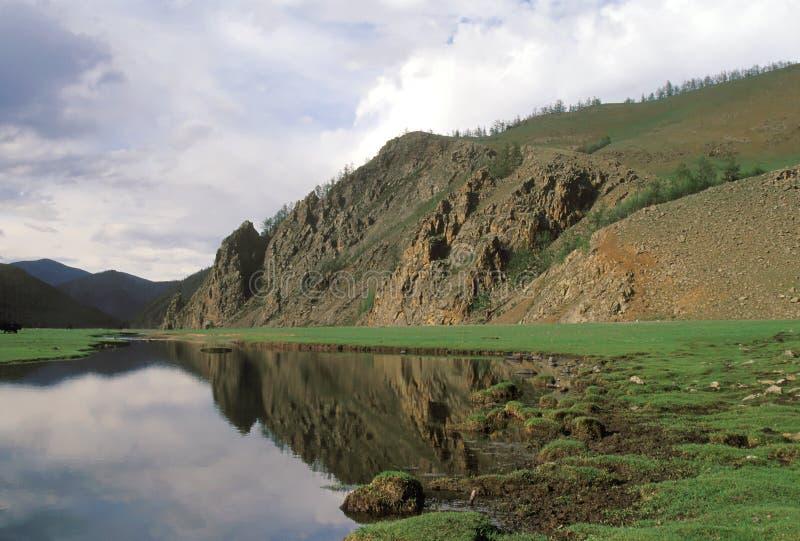 liggandemongolian royaltyfria bilder