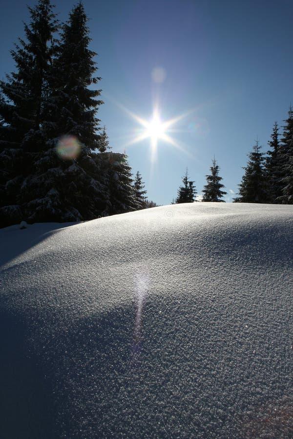 ligganderomania vinter arkivbilder
