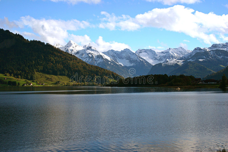 liggandeschweizare royaltyfri foto