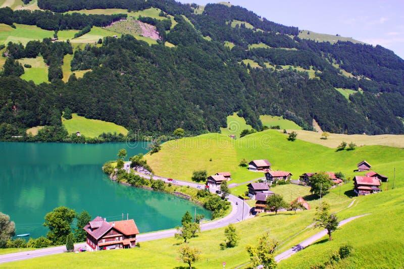 liggandeschweizare royaltyfri fotografi