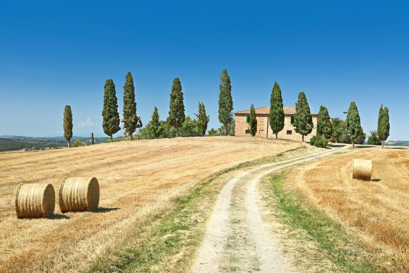 liggandesommar tuscany royaltyfria foton