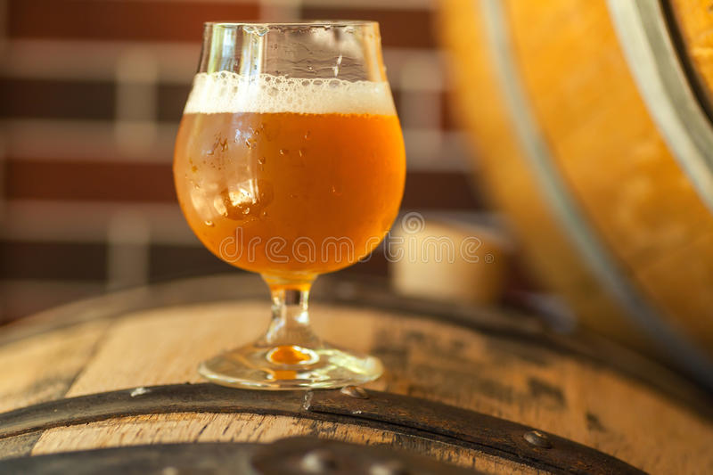 Light beer on a barrel. Glass of unfiltered light beer standing on an oak wood barrel in a brewery royalty free stock photos