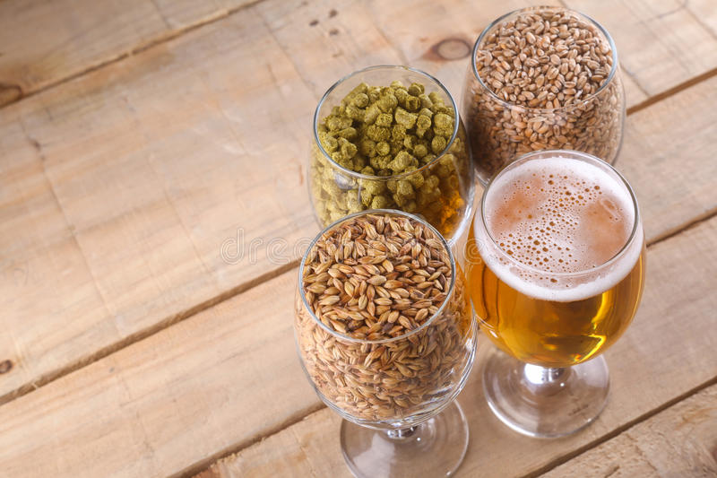 Light beer and ingredients. Glasses full of light beer, different types of malt and hops over a wooden background stock image
