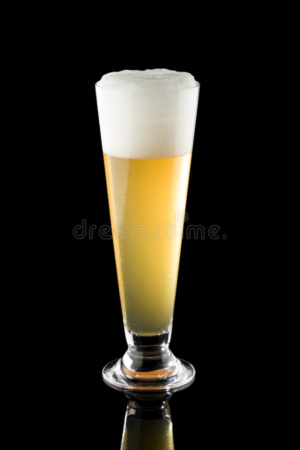 Download Light beer in tall glass stock image. Image of golden - 6255799