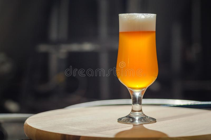 Light beer on wooden tray. Glass of light beer standing on a wooden tray in an operating brewery royalty free stock photos