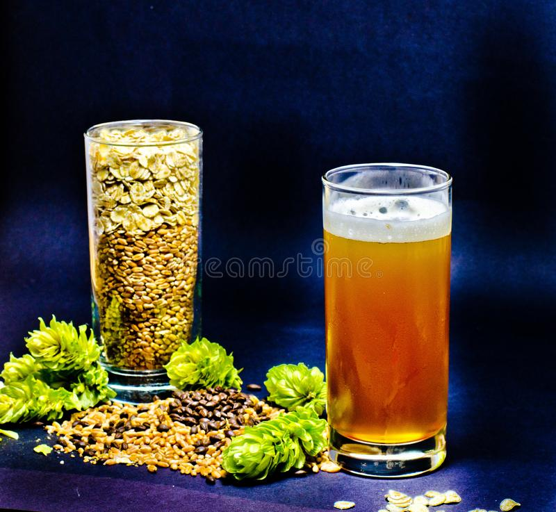 Light beers in glass with wheat, seeds and hops. Light beers in glass with foam together with wheat, seeds and hops on a black background stock image