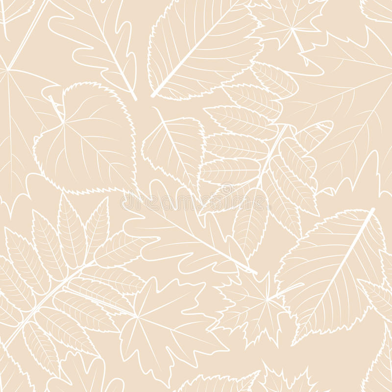Light beige background with outline hand drawn autumn leaves. Vector fall seamless pattern. royalty free illustration
