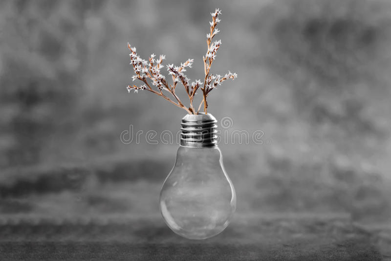 Light blub with flowers royalty free stock photography