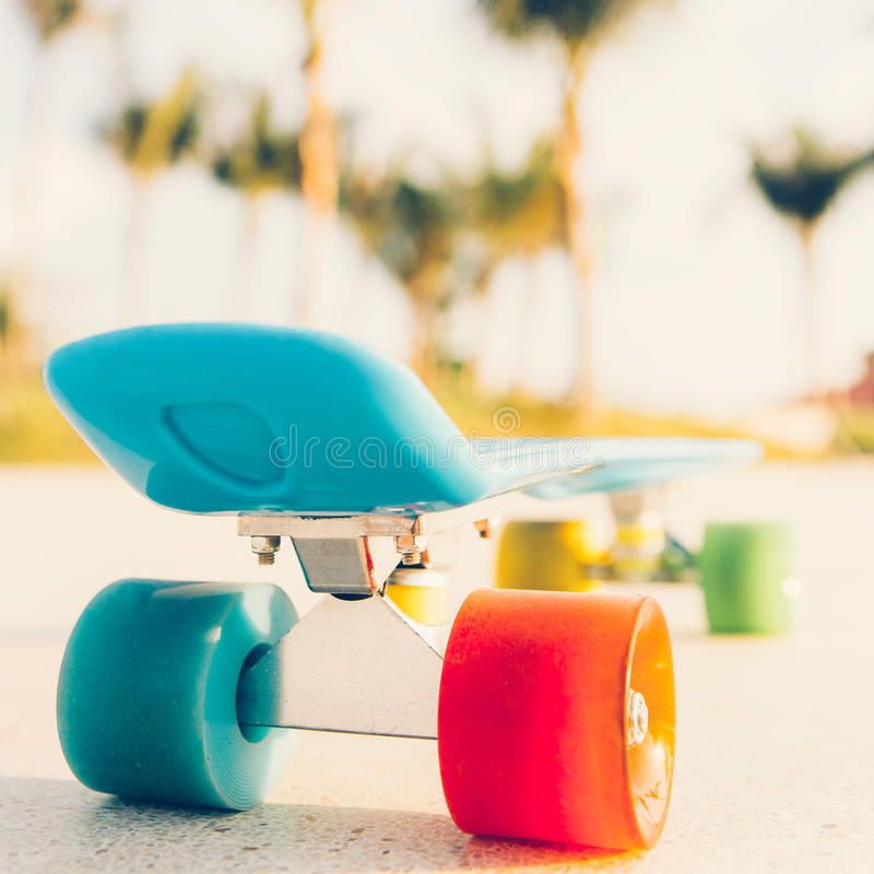Light blue longboard penny board with multicolored wheels ready stock photos