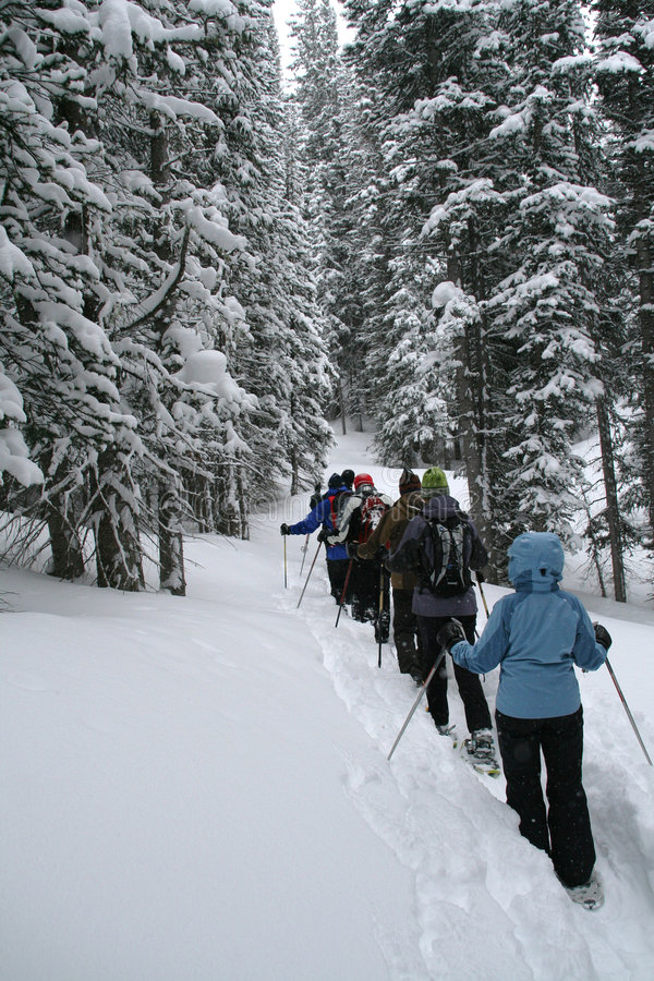 Download Light Blue Parka, Snowshoe Hikers In Woods, Stock Photo - Image: 1933734