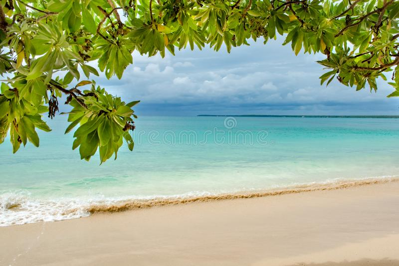 Tropical holiday, a tropical beach with turquoise water and light sand framed by leaves of tropical tree stock image