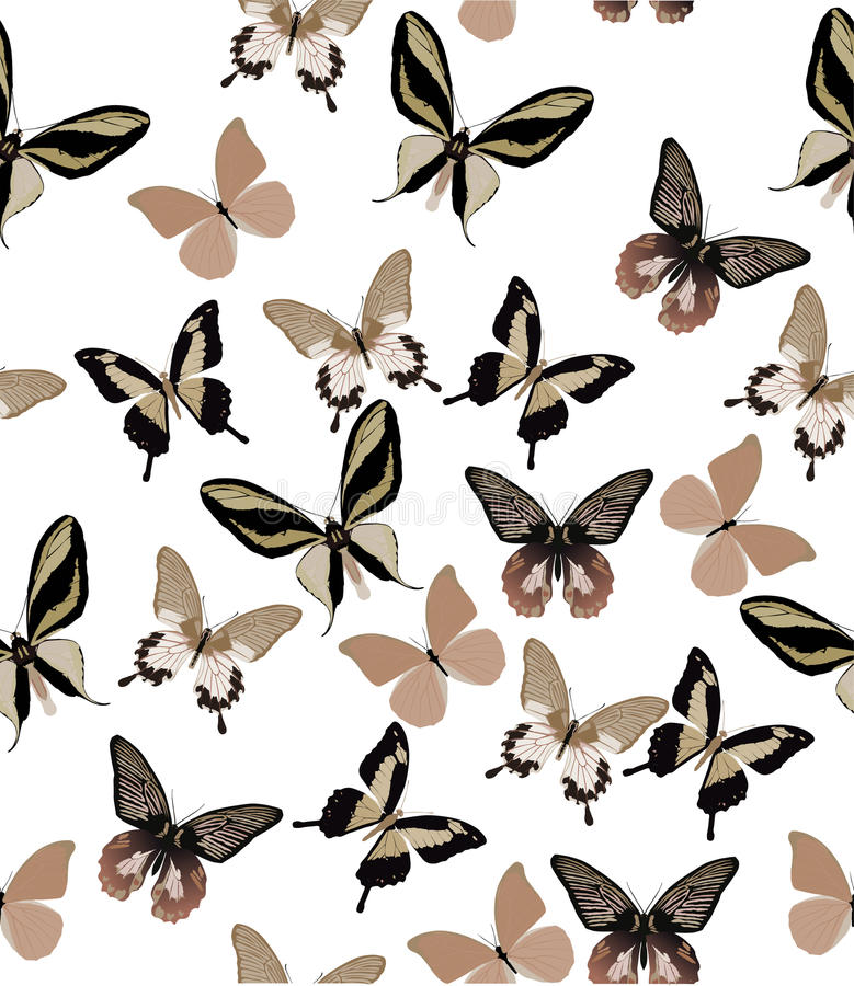 Light Brown Butterfly Background Stock Image