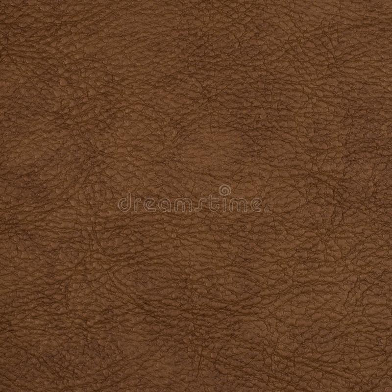 Light brown leather texture surface. stock photos