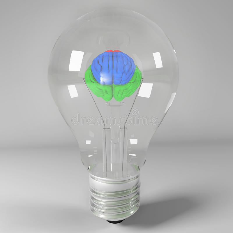 Light bulb with a brain inside stock images
