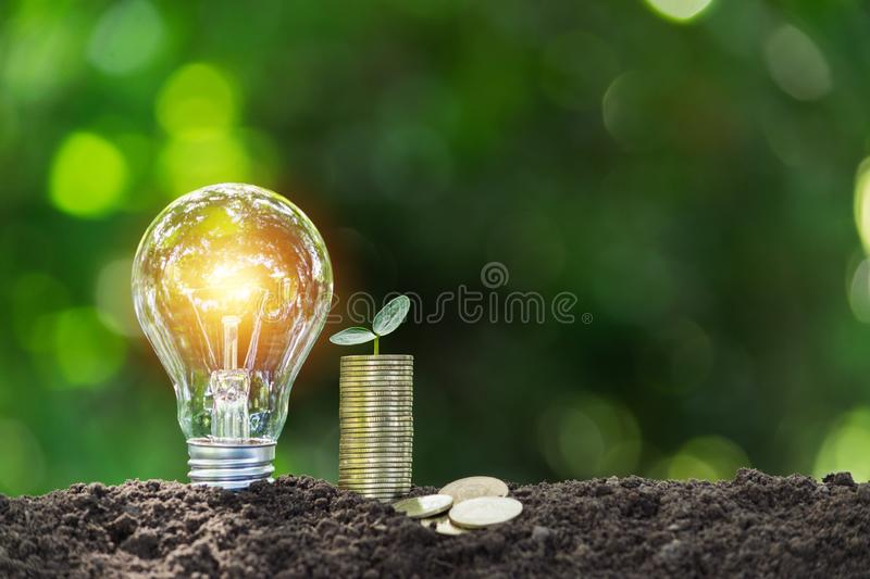 Light bulb with coins beside and young plant on top concept put on the soil in soft green nature background.  stock photography