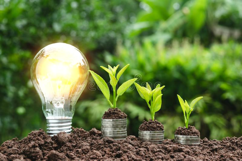 Light bulb with coins beside and young plant on top for saving m. Oney,financial,business or energy concept put on the soil in soft green nature background stock images