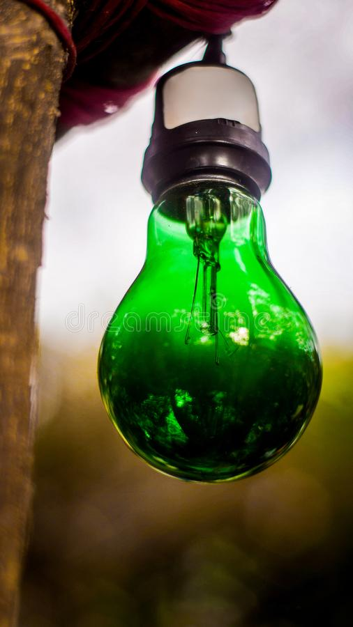 Light bulb green royalty free stock image