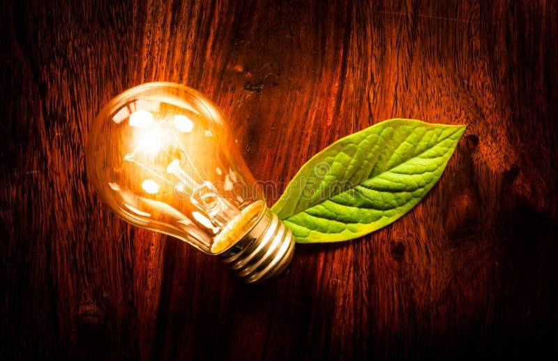 Light bulb with a leaf stock photos