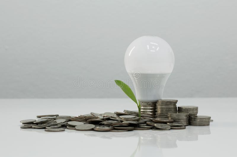 Light bulb, money and plant on white background. stock images