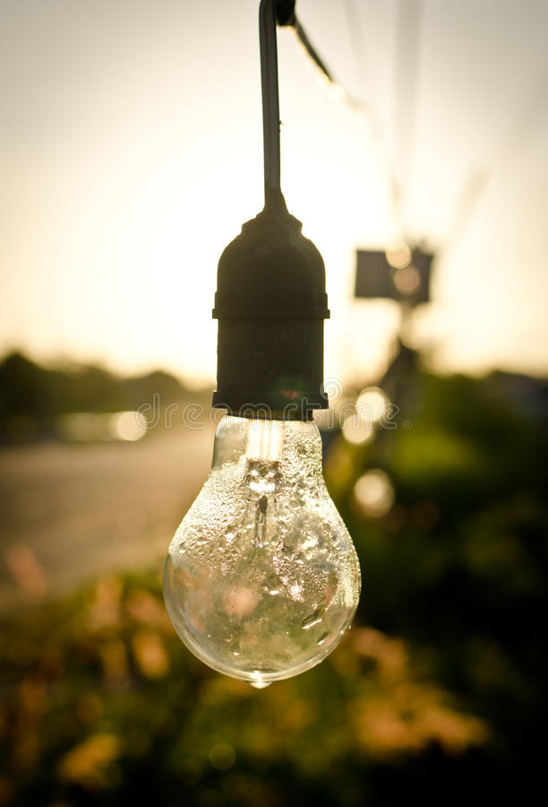 Light bulb after rain. In morning stock photo