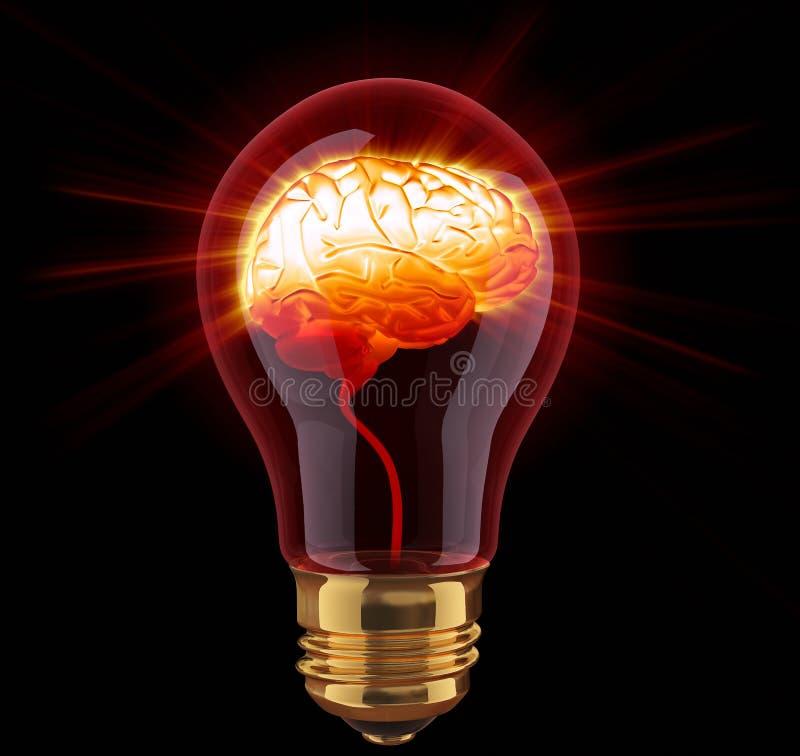 Light bulb with shining brain. Inside stock illustration