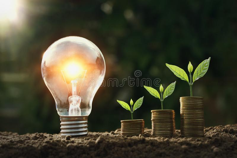 Light bulb on soil with young plant growing on money stack. saving. Finance royalty free stock image