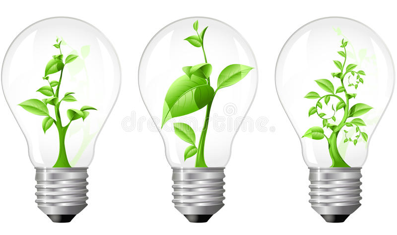 Download Light Bulb With Sprout Inside Stock Vector - Image: 16078479