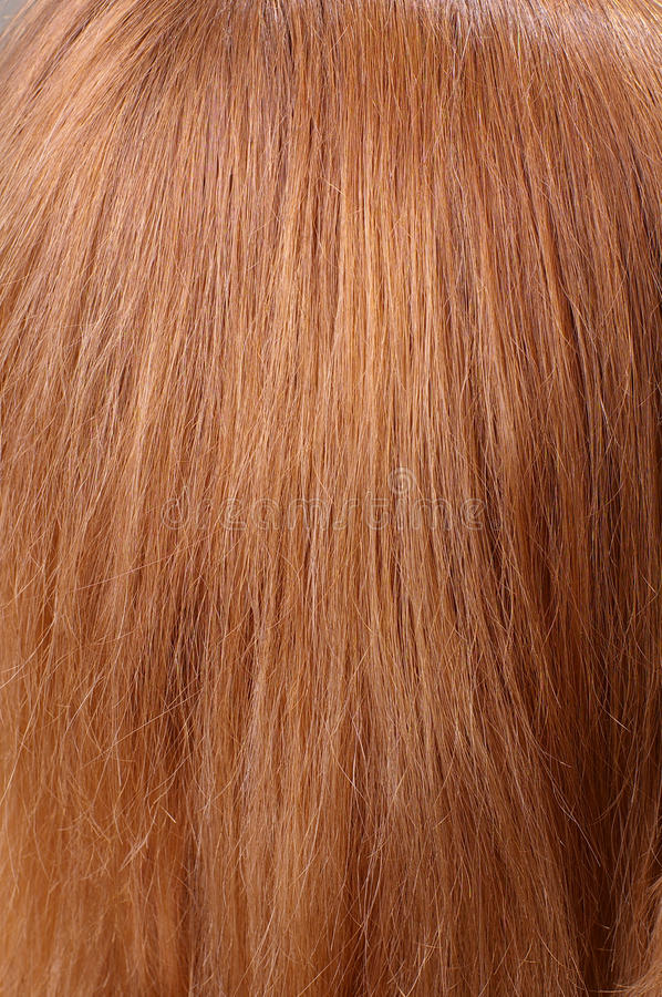 Download Light chestnut hair stock photo. Image of natural, human - 23321760