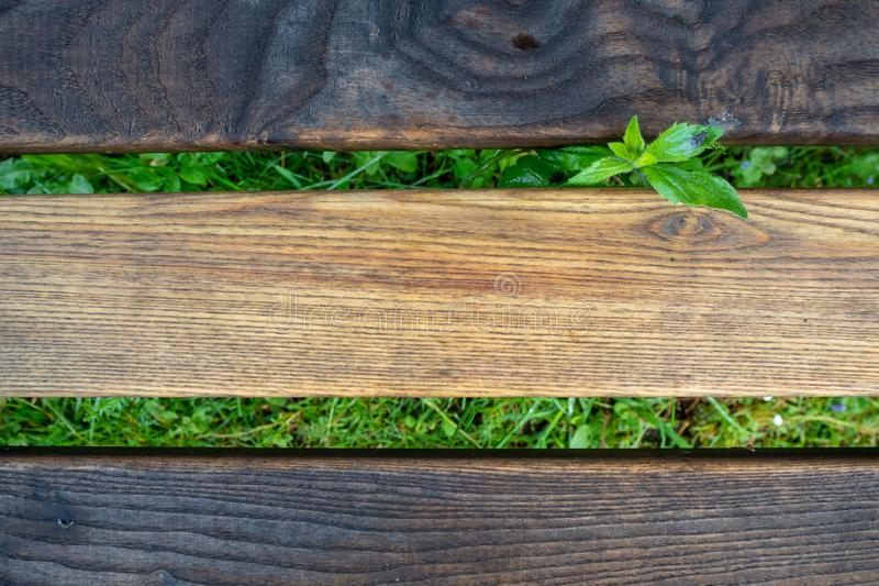 Light and dark color wooden plate of wooden bench with fresh green leaf on grass for background. With copy space stock images