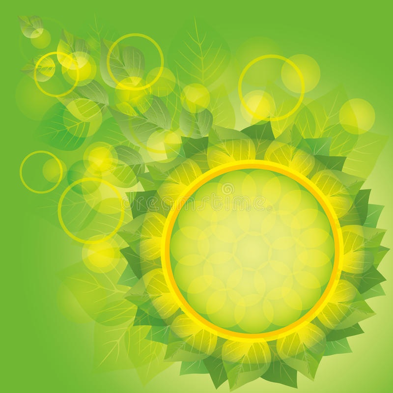 Light eco background with fresh green leaves royalty free stock photography