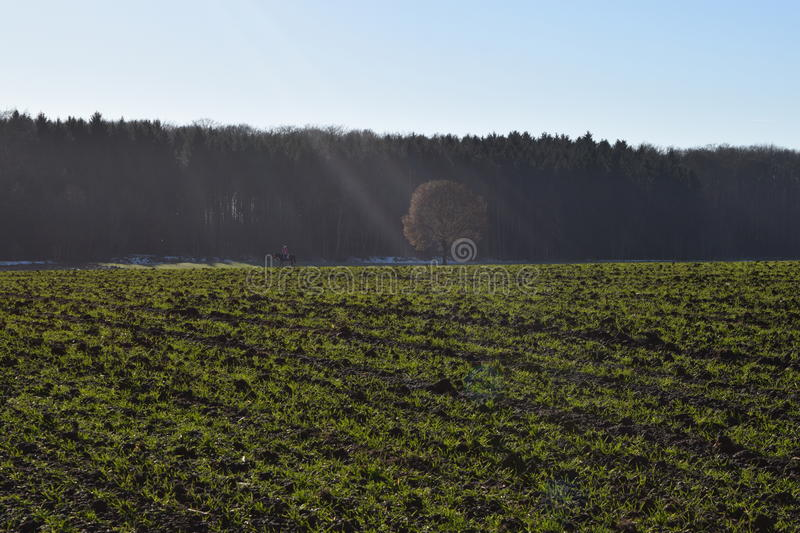 Light games in autumn landscape royalty free stock photos