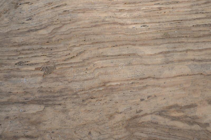 Light Gray, surface abstract art tone pattern royalty free stock photo