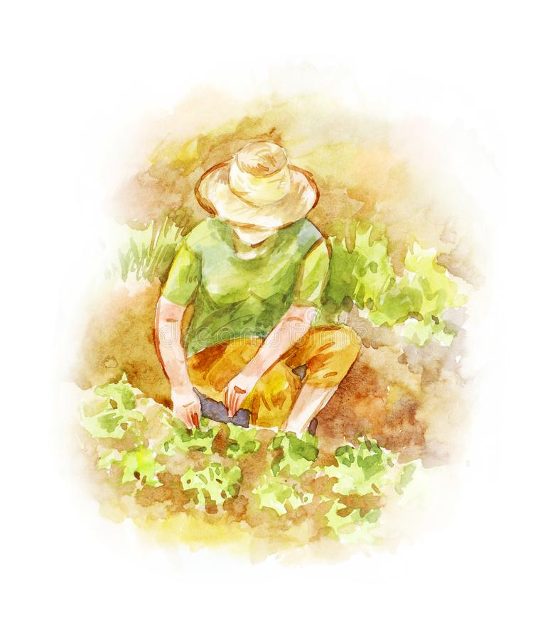 Light green summer illustration suitable for background. Woman i. N a hat works in the garden. Watercolor drawing vector illustration