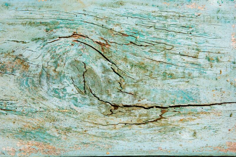 Light green or turquoise wooden plank with fissures stock photography