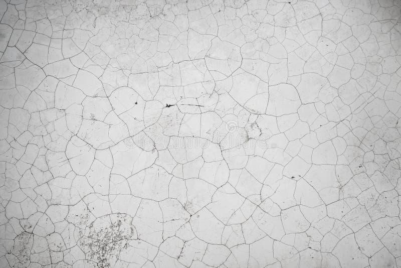 Light grey cracked texture. Light grey cracked texture background royalty free stock photos