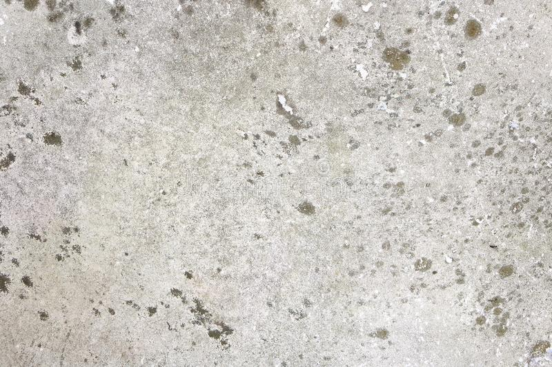 Background Of Light Grey Stone Tile With Some Black Moss