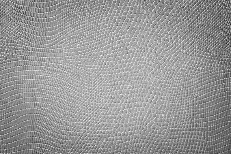 Grey Neutral Snake Skin Texture. Light grey texture of a snake skin imitation usefull as a fashion style background or gift card stock or cardboard royalty free stock photos
