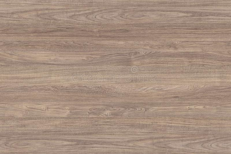 Light grunge wood panels. Planks Background. Old wall wooden vintage floor stock photography