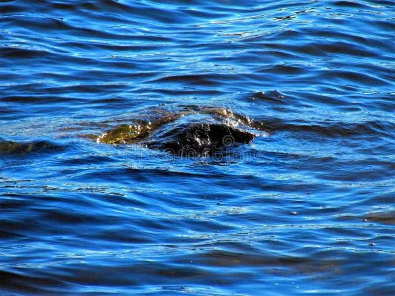 Light lake waves wash stone stock photos